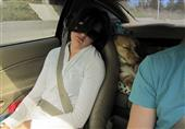 الركاب النائمون لهم تأثير «مُعدي» على قائد السيارة !
