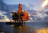 النفط يهبط مع ارتفاع عدد الحفارات النفطية في أمريكا