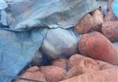 محافظة الشرقية: صراصير وذباب وصدأ في مصنع لانشون شهير