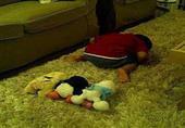 كيف تحبب ابنك في الصلاة - الشيخ أحمد تركي