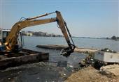 بالصور.. رفع 18 طن أسماك نافقة بالبحيرة وإعدامها بالطرق الصحية