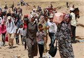 الاندبندنت: هولندا تمنع المأوى والخبز عن اللاجئين السوريين
