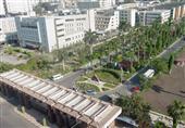 جامعة المنصورة تقرر بدء الدراسة في 27 سبتمبر