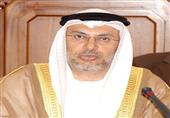 """وزير الشئون الخارجية الإماراتي: إخوان اليمن """"انتهازيين"""""""