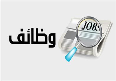 فتح باب التقدم لـ77 فرصة عمل بمكتب القوى العاملة في القليوبية