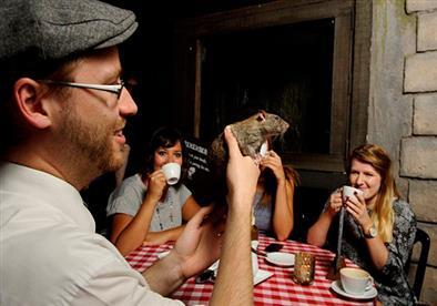 بالصور.. مطعم يوفر لزبائنه فئرانًا حية على طاولاتهم.. والسبب