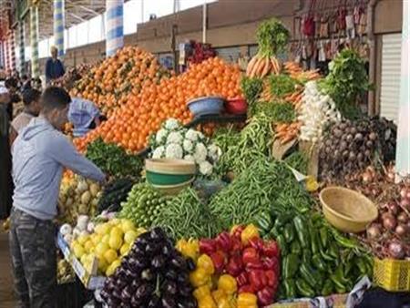 لماذا تتراجع أسعار الخضروات في مصر؟