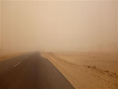 سقوط أشجار وانقطاعات بالتيار الكهربائي نتيجة الطقس السيئ بكفر الشيخ
