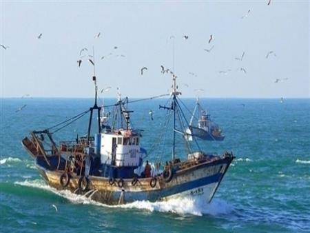 """من أول فبراير.. وقف الصيد بالبحر الأحمر و""""الزراعة"""" تتوقع ارتفاع أسعار الأسماك"""