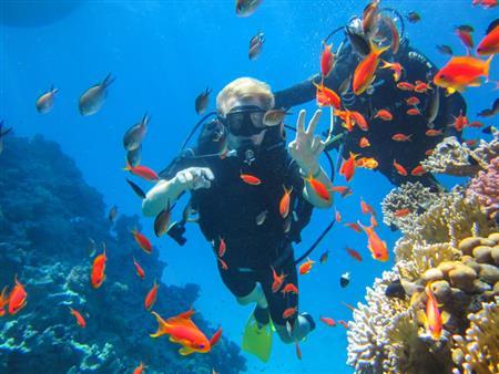 من واحات الصحراء للبحر الأحمر.. إليك أفضل 9 أنشطة مائية في مصر