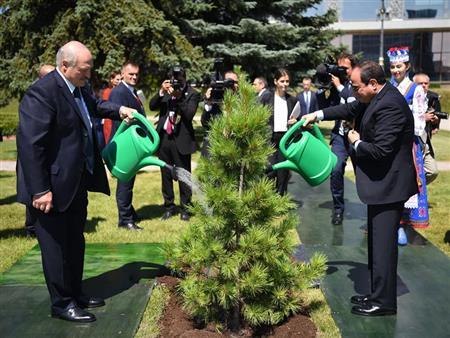 بالصور.. السيسي يشارك رئيس بيلاروسيا في زرع شجرة الصداقة