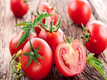تعزز الحيوانات المنوية وتفقد الوزن.. 6 فوائد مذهلة لتناول الطماطم