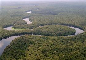 """المسلمانى: """"نهر الكونغو وإيجا"""" يوفر 40 ألف ميجا وات لمصر"""