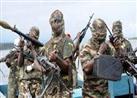 """نيجيريا: """"بوكو حرام"""" تهاجم قرية وتستولي على الغذاء والأدوية"""