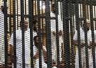 """تأجيل إعادة محاكمة 5 متهمين في قضية """"أحداث الإسماعيلية"""" للغد"""