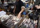 شعبة الأسماك : الدولار مسئول عن زيادة الأسعار في مارس