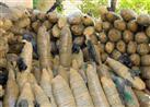 ضبط سيارة محملة  بـ 300 كيلو بانجو في المنيا