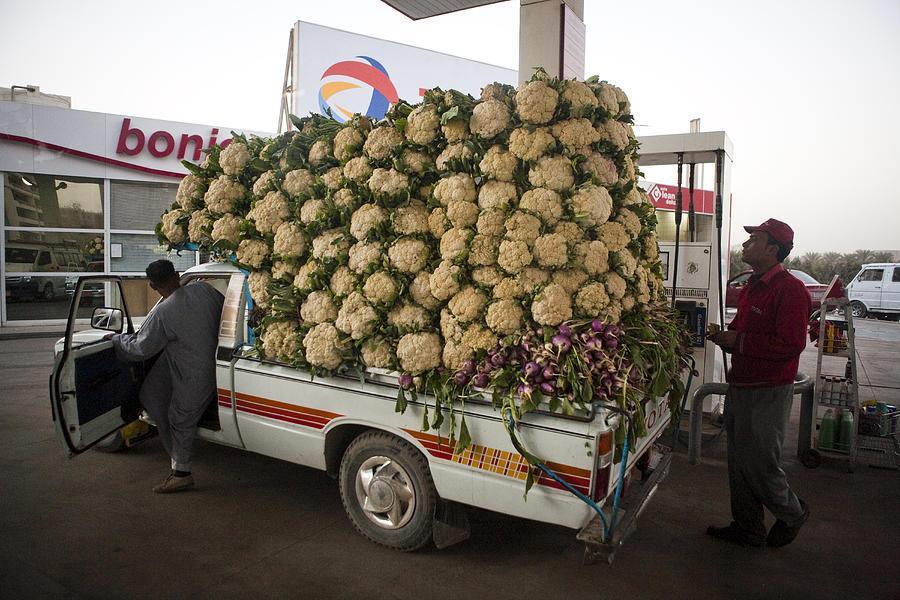 أغرب وأطرف وسائل النقل في العالم 10 7/2/2015 - 12:07 ص