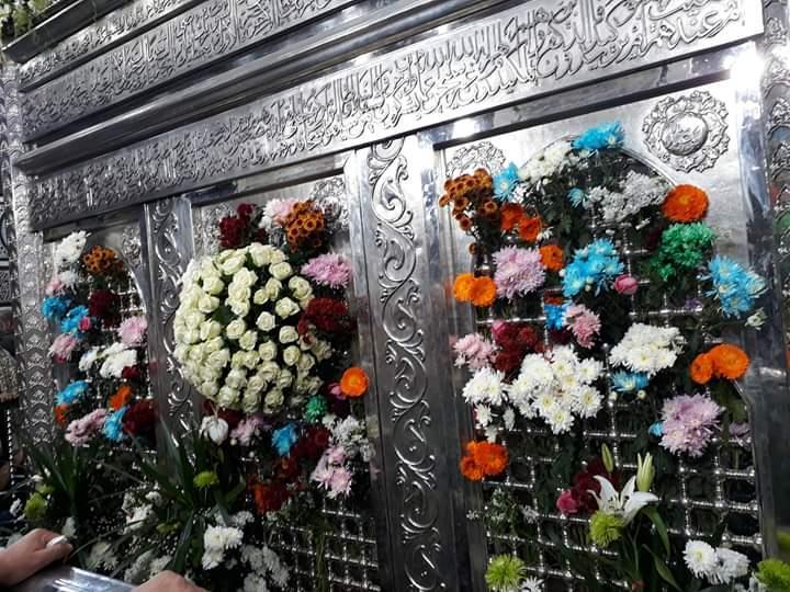 لماذا يحتفل المصريون بمولد الإمام