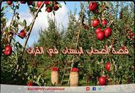 قصة أصحاب البستان في القرآن