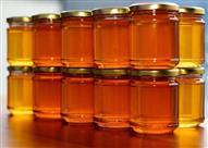 بالفيديو: كيف تعرف العسل الاصلي من المزيف؟