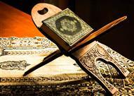 كائنات ذكرت في القرآن رغم صغرهن !