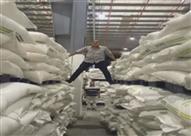 تامر أمين يفجر مفاجأة في أكبر ضبطية للسكر داخل مخزن شركة مشروبات غازية