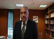 مصر تبحث طرح مشروع قرار يحظى بدعم مجلس الأمن لحل الأزمة السورية