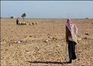 ضحايا ألغام مطروح ينتظرون تعويضًا من حرب مضى عليها 71 عامًا- (تقرير)