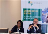 مصر تعرض تجربتها في نشاط التخصيم خلال اجتماع قاري بجنوب أفريقيا