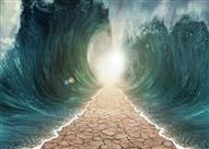ما هي معجزات نبي الله موسى التسعة ؟