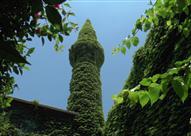 بالصور: الجامع الأخضر في كوردستان.. تحفة معمارية تغطيه النباتات
