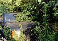 """سيارات """"زومبي"""" فارهة في مقبرة جماعية بالصين.. صور"""