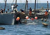"""الخارجية: تصريحات نقيب الصيادين عن جثمان صياد مركب """"زينة"""" غير صحيحة"""
