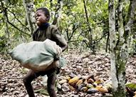 7 شركات شيكولاتة عالمية تستعبد الأطفال وتستغلهم