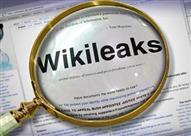 """""""وكالة أمريكية"""": وثائق """"ويكيليكس"""" أكدت تلقي مصريين تمويلًا من واشنطن"""