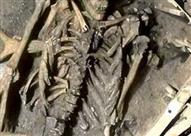 العثور على هيكل عظمي بدون جمجمة بالطالبية.. والنيابة تأخذ عينة
