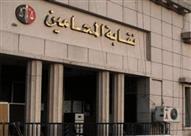 اعتصام عشرات المحامين بمقر النقابة بالدقهلية للمطالبة برحيل شركة إدارة