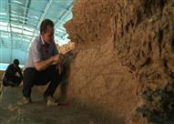 علماء آثار يكتشفون مدينة قديمة تضم حضارات هندية- يونانية في باكستان