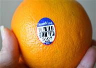 بالفيديو.. ماذا تعني الملصقات الصغيرة على الفواكه والخضروات؟