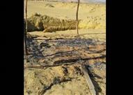مواطن بالواحات يستغيث بالداخلية: بلطجية أشعلوا النيران في أرضي