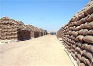 تموين الغربية: 36 طن قمح جرى تهريبهم من داخل الشون