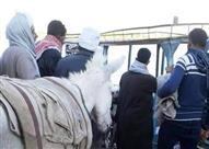 ضابط شرطة يجبر جزار على تناول حمار بعد أن ضبطه متلبسًا بذبحه - فيديو