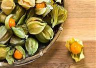 """فوائد صحية عديدة لـ """"الحرنكش"""" .. فاكهة الشتاء المنسية"""