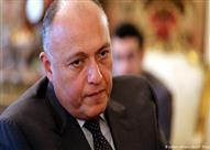 رئيس العلاقات الخارجية بالنواب: شكري أكد ضرورة عودة العلاقات مع إيطاليا