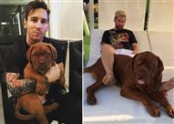 """بالصور- السر وراء ضخامة """"كلب"""" ميسي التي أثارت جدلاً"""