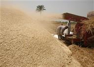 وزير التموين: احتياطي القمح يكفي احيتاجات البلاد 2.6 شهر