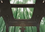 """بالفيديو.. فورد تسعى لاستخدام أشجار """"البامبو"""" في صناعة سياراتها"""