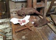 """""""حكماء المسلمين"""" يدين تفجيرات الكنائس بمصر"""