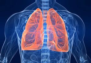 6 نصائح لسلامة الجهاز التنفسي (انفوجراف)